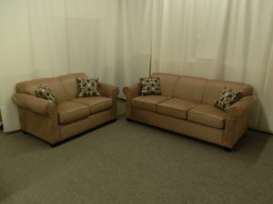 Made in Canada Sofa and Loveseat