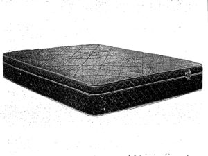 24346 - Chiropractic Pocket Coil Mattress - SW-brody